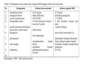 perbedaan sistem tanam padi konvensional dengan SRI